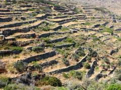 05_Terraces-on-the-slopes-of-the-arid-landscape-of-the-island-of-Tinos,-Greece